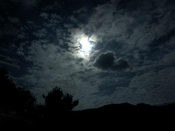 PICT0578.JPG